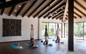 Kleine Version von: Holistic Retreat Cal Reiet Yoga Shala