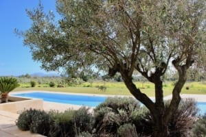 Kleine Version von: ISLA Finca 02 Campos Pool View