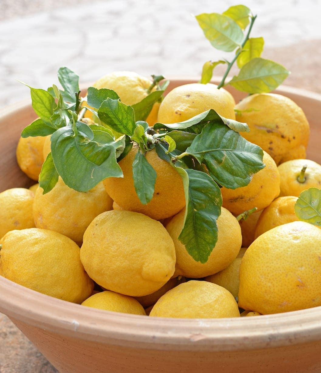 ISLA Finca Travel Sa Pletassa Zitronen