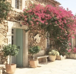 Kleine Version von: ISLA Hotel Es Turo Ses Salines Rezeption